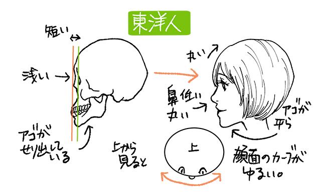 東洋人の鼻の絵