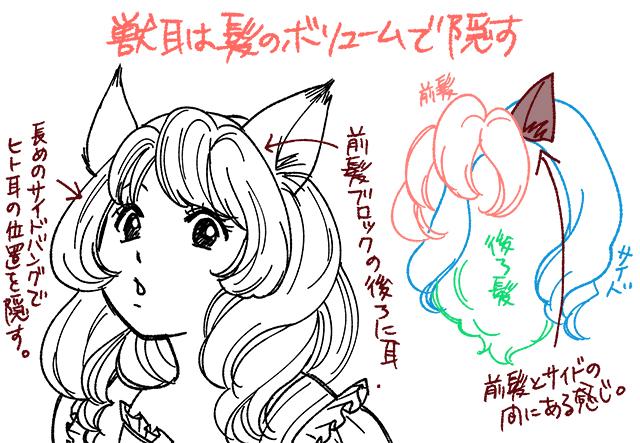 耳と髪の毛の関係図