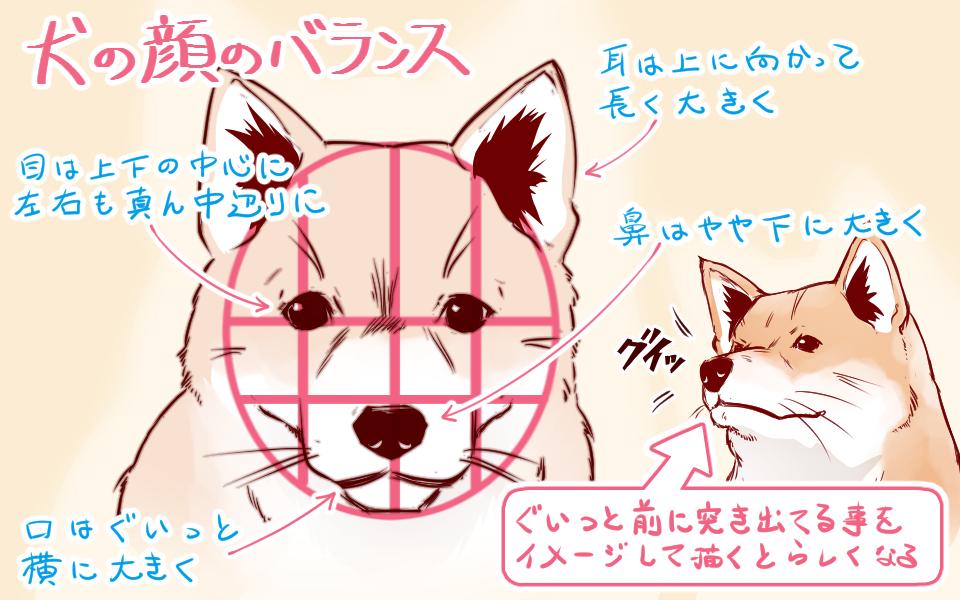 イラストや漫画に使える 上手な犬 猫の描き方 イラスト マンガ描き方ナビ