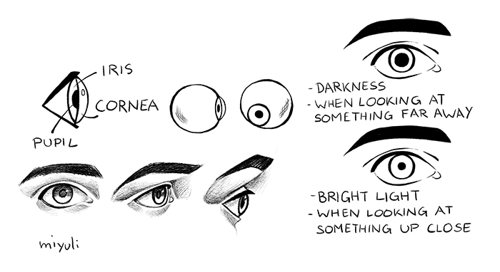Easy Tips For Drawing Eyes Art Rocket