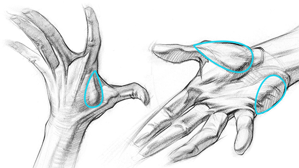 Draw Expressive Hand Poses From Imagination Art Rocket