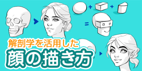 解剖学を活用した顔の描き方【パーツの動き方に注目!】