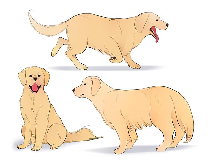 円から始める 犬の描き方講座 イラスト マンガ描き方ナビ