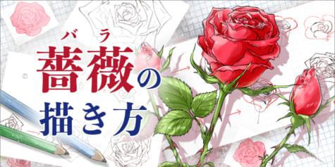 【薔薇の描き方】簡単な線だけでバラに見えるテクニック