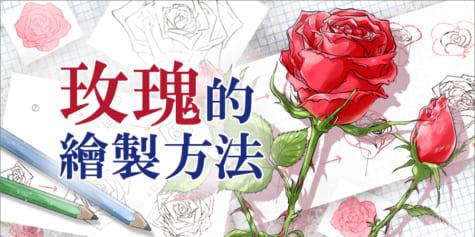 玫瑰的繪製方法