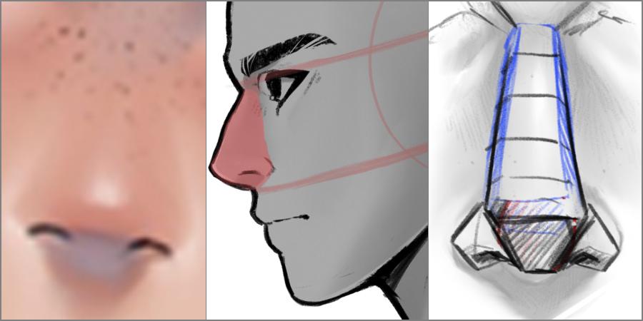 Cómo dibujar una nariz
