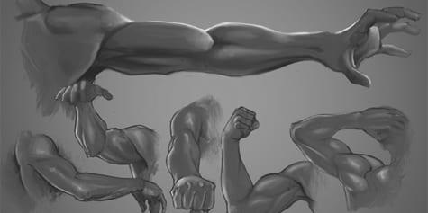 Comment dessiner des bras