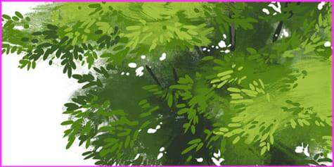 Comment dessiner différents feuillages avec une profondeur de champ